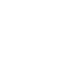 Ticket Guardian